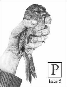 Poecology Issue 5