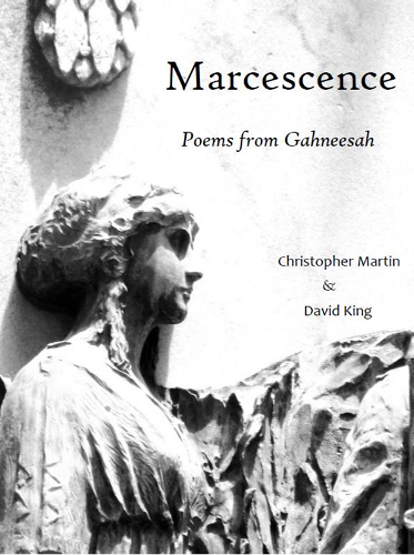 Marcescence final cover PNG.png.opt373x500o0,0s373x500